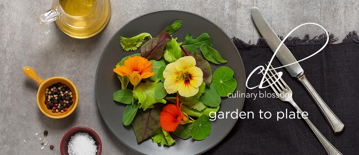 garden-to-plate